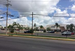 Foto de local en renta en  , montes de ame, mérida, yucatán, 14108356 No. 01