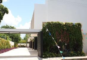 Foto de rancho en venta en  , montes de ame, mérida, yucatán, 14283109 No. 01