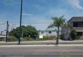 Foto de terreno habitacional en renta en  , monteverde, ciudad madero, tamaulipas, 7025587 No. 01