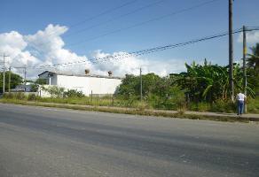 Foto de terreno habitacional en venta en  , moralillo, pánuco, veracruz de ignacio de la llave, 11803978 No. 01