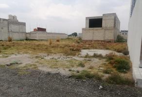 Foto de terreno habitacional en venta en morelos 1, san sebastián, metepec, méxico, 0 No. 01