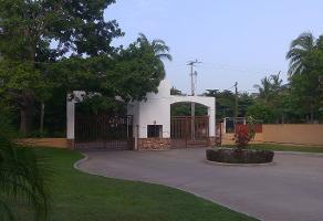 Foto de terreno habitacional en venta en morelos , la zanja o la poza, acapulco de juárez, guerrero, 14256028 No. 01