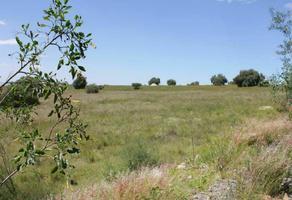 Foto de terreno habitacional en venta en morelos , san luis huexotla, texcoco, méxico, 0 No. 01