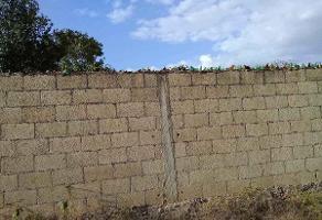 Foto de terreno habitacional en venta en  , mulchechen, kanasín, yucatán, 14177371 No. 01