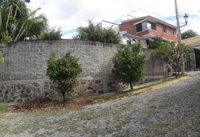 Foto de terreno habitacional en venta en n n, el rascadero, emiliano zapata, morelos, 9478484 No. 02