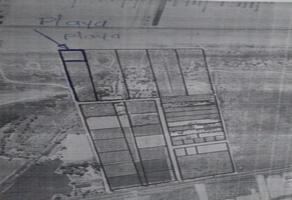 Foto de terreno comercial en venta en na , plutarco elias calles, la paz, baja california sur, 16579858 No. 01