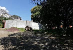 Foto de terreno habitacional en venta en n/a , san andres tuxtla centro, san andrés tuxtla, veracruz de ignacio de la llave, 0 No. 01