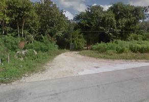 Foto de terreno industrial en venta en na , tulum centro, tulum, quintana roo, 7715200 No. 01