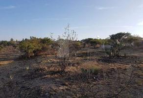 Foto de terreno habitacional en venta en nacional 10, palmillas, san juan del río, querétaro, 0 No. 01