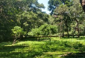 Foto de terreno habitacional en venta en narciso mendoza , comala, comala, colima, 0 No. 01
