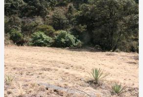 Foto de terreno habitacional en venta en  , nepantla de sor juana inés, tepetlixpa, méxico, 15869823 No. 01