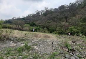 Foto de terreno habitacional en venta en  , nepantla de sor juana inés, tepetlixpa, méxico, 0 No. 01