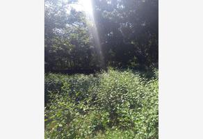 Foto de terreno habitacional en venta en  , nepantla de sor juana inés, tepetlixpa, méxico, 6397997 No. 01