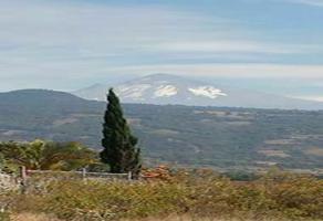 Foto de terreno habitacional en venta en nepopualco , nepopualco, totolapan, morelos, 0 No. 01