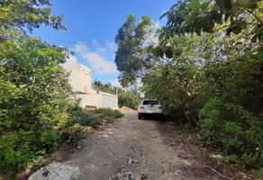 Foto de terreno habitacional en venta en neptuno , álamos i, benito juárez, quintana roo, 18537580 No. 01