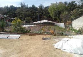 Foto de terreno habitacional en venta en nigromante 00, taxhido, tepeji del río de ocampo, hidalgo, 19297295 No. 01