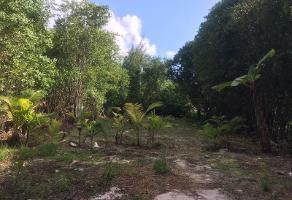 Foto de terreno comercial en venta en niños heroes 1, puerto morelos, benito juárez, quintana roo, 4391040 No. 01