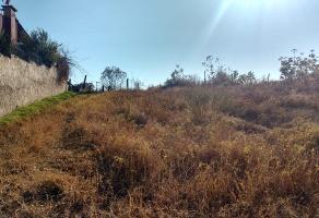Foto de terreno habitacional en venta en nispero , la primavera, zapopan, jalisco, 6610111 No. 01
