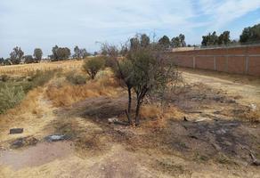 Foto de terreno habitacional en venta en nogal , campestre jacarandas, durango, durango, 0 No. 01