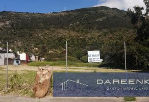 Foto de terreno habitacional en venta en  , nogales centro, nogales, veracruz de ignacio de la llave, 0 No. 01