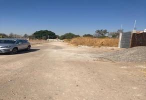 Foto de terreno habitacional en venta en  , nogalia, irapuato, guanajuato, 19166783 No. 01