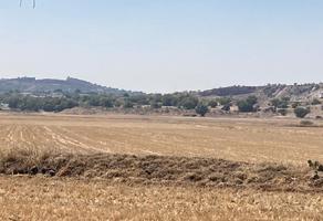 Foto de terreno comercial en venta en nopaltepec , san miguel atepoxco, nopaltepec, méxico, 0 No. 01