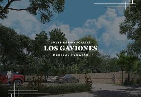 Foto de terreno habitacional en venta en np , los cocos, mérida, yucatán, 14027670 No. 01