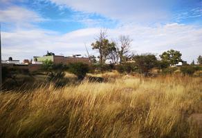 Foto de terreno habitacional en venta en np np, 20 de noviembre ii, durango, durango, 17434438 No. 01