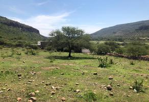 Foto de terreno habitacional en venta en np np, el durazno, durango, durango, 18257944 No. 01