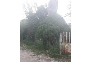 Foto de casa en venta en  , nueva cadereyta, cadereyta jiménez, nuevo león, 0 No. 01