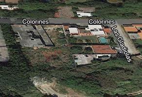 Foto de terreno habitacional en venta en nueva italia , del empleado, cuernavaca, morelos, 0 No. 01