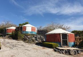 Foto de rancho en venta en  , nueva morelos, xochitepec, morelos, 0 No. 01
