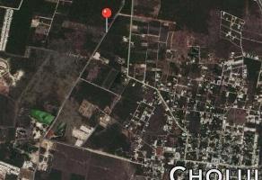 Foto de terreno habitacional en venta en  , la guadalupana, mérida, yucatán, 10990539 No. 01