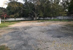 Foto de terreno habitacional en renta en  , nuevo aeropuerto, tampico, tamaulipas, 19215563 No. 01