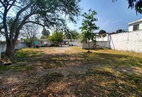 Foto de terreno habitacional en renta en  , nuevo aeropuerto, tampico, tamaulipas, 19964521 No. 01