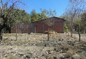 Foto de terreno habitacional en venta en  , nuevo carmen tonapac, chiapa de corzo, chiapas, 0 No. 01