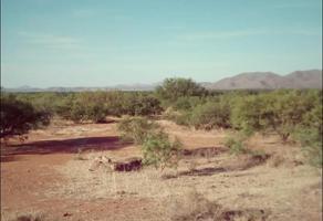 Foto de terreno habitacional en venta en  , nuevo chihuahua, chihuahua, chihuahua, 20658217 No. 01