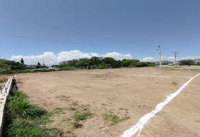 Foto de terreno habitacional en venta en  , nuevo chihuahua, chihuahua, chihuahua, 21365389 No. 01