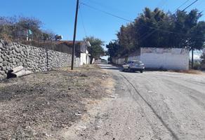 Foto de terreno habitacional en venta en nuevo leon , 3 de mayo, emiliano zapata, morelos, 19310050 No. 01