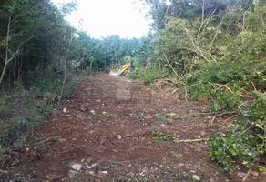 Foto de terreno comercial en venta en nuevo leon , colegios, benito juárez, quintana roo, 5712163 No. 01