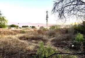 Foto de terreno habitacional en venta en  , nuevo méxico, saltillo, coahuila de zaragoza, 0 No. 01