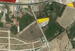 Foto de terreno habitacional en venta en nuevo vallarta , nuevo vallarta, bahía de banderas, nayarit, 10609625 No. 01