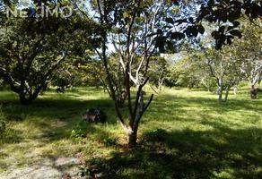 Foto de terreno industrial en venta en null , el rodeo, miacatlán, morelos, 18624041 No. 01