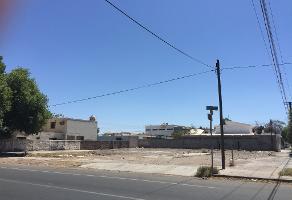 Foto de terreno habitacional en renta en numero reeleccion s/n , ciudad obregón centro (fundo legal), cajeme, sonora, 5739803 No. 01