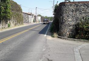 Foto de terreno habitacional en venta en numero reeleccion , tlayacapan, tlayacapan, morelos, 17461506 No. 01