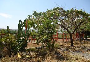 Foto de terreno habitacional en venta en o 00, tehuixtla, jojutla, morelos, 0 No. 01
