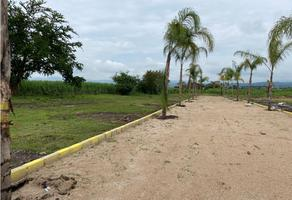 Foto de terreno habitacional en venta en  , oacalco, yautepec, morelos, 0 No. 01