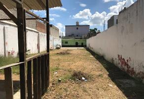 Foto de terreno comercial en renta en  , oaxaca centro, oaxaca de juárez, oaxaca, 13827628 No. 01