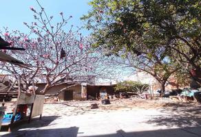 Foto de terreno comercial en venta en  , oaxaca centro, oaxaca de juárez, oaxaca, 0 No. 01