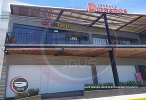 Foto de local en renta en  , oaxtepec centro, yautepec, morelos, 16235781 No. 01
